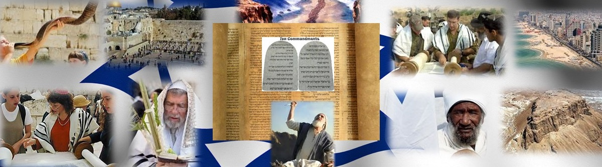 Shalom from G-d – English
